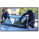 Windshield Replacement Business For Sale Photo 1
