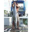 Offshore Sport Fishing Charter Photo 3